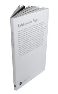 palabras-con-angel-libro