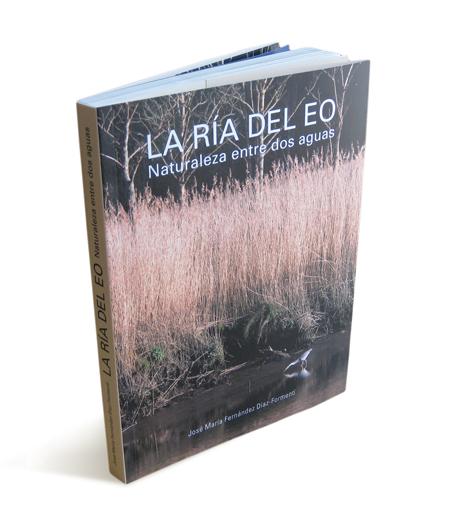 ria-del-eo-1533b